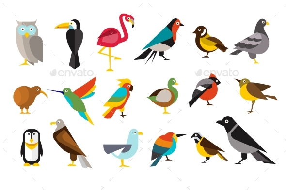 Various Bird Set Colorful Vector Illustrations - Animals Characters