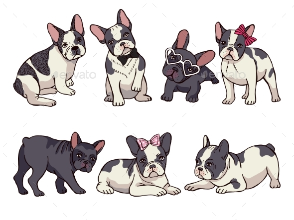 Set of French Bulldogs - Animals Characters