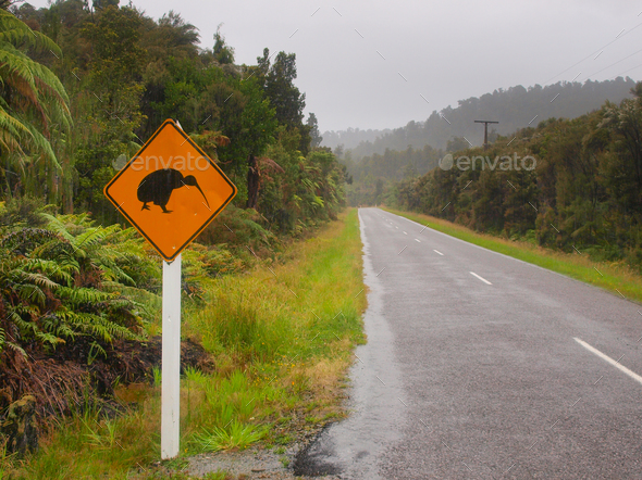 Kiwi Crossing Sign in Rain - Stock Photo - Images