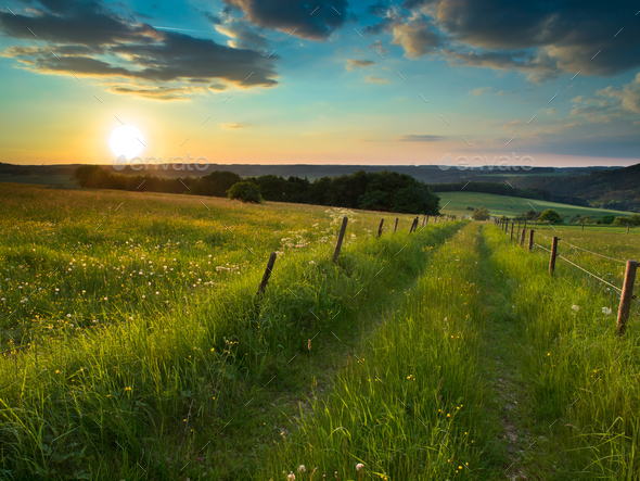 sunset trail - Stock Photo - Images