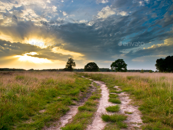 Heathland Trail Sunset - Stock Photo - Images