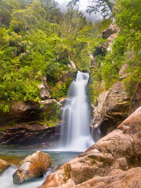 Rainforest waterfall New Zealand - Stock Photo - Images