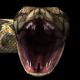 4K Snake Terrified - VideoHive Item for Sale