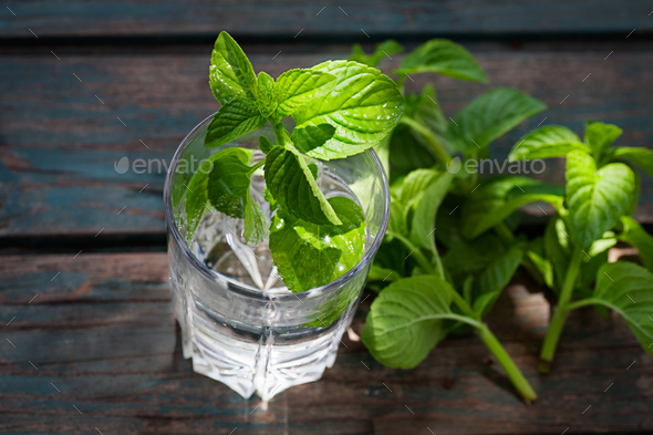 Mint drink - Stock Photo - Images