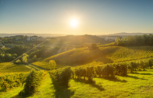 Panoramic view of countryside and chianti vineyards from San Gim - Stock Photo - Images