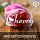 SM Cherry - Responsive Magento Theme - ThemeForest Item for Sale