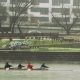 Rowing Four Moving Backwards on the River at Urban Area - VideoHive Item for Sale