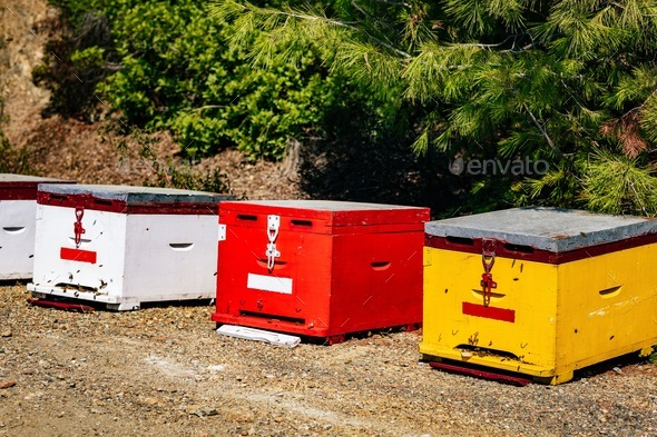 A row of wooden colorful bee hives in summertime - Stock Photo - Images