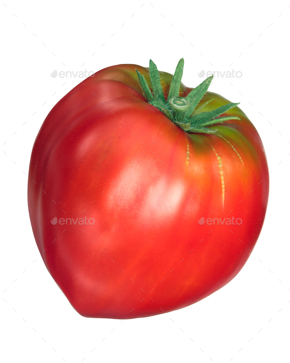 Cuor di bue, oxheart tomato, top, paths - Stock Photo - Images