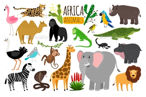 African Animals Various Wildlife Animals - Animals Characters