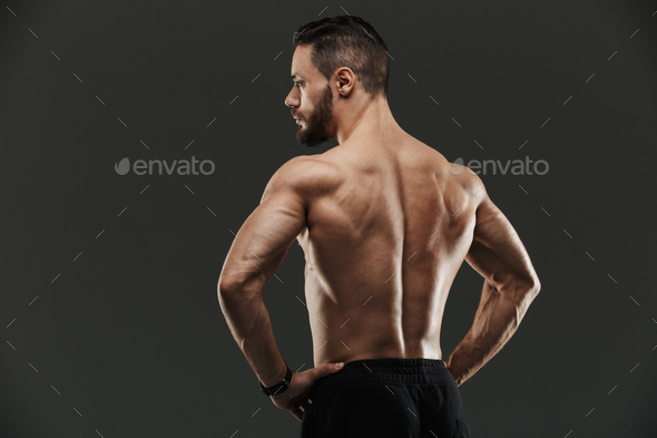 Back view portrait of a fit muscular bodybuilder posing - Stock Photo - Images