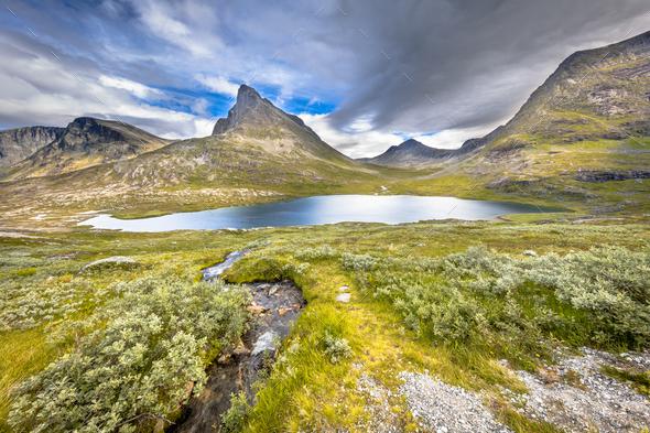 Alpine vegetation and mountain peaks along Trollveggen road - Stock Photo - Images