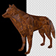 Low Poly Wolf Made Of Wood - VideoHive Item for Sale
