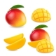 Mango Realistic Fruit Whole and Pieces - GraphicRiver Item for Sale