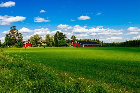Traditional red farm house barn with white trim in open pasture with blue sky in Finland - Stock Photo - Images