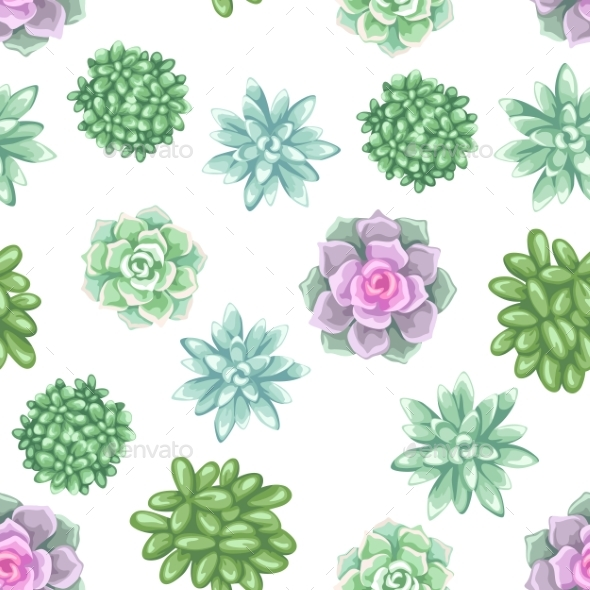 Seamless Pattern with Succulents - Flowers & Plants Nature
