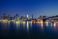 View of Manhattan by night - PhotoDune Item for Sale