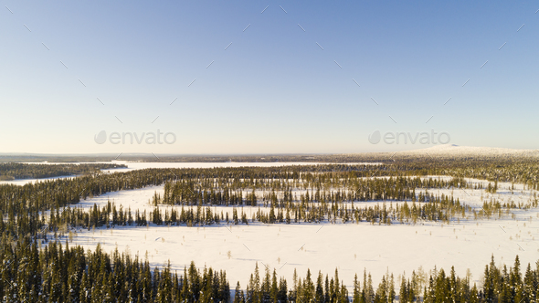 Aerial view of the lake and forest on a cold winter day sunrise - Stock Photo - Images