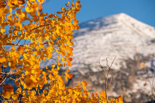 Autumn in Rocky Mountains, Colorado - Stock Photo - Images