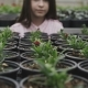View of Pretty Smiling Girl in Greenhouse, Looks and Touches Flower - VideoHive Item for Sale