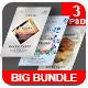 Summer Flyer Bundle - GraphicRiver Item for Sale
