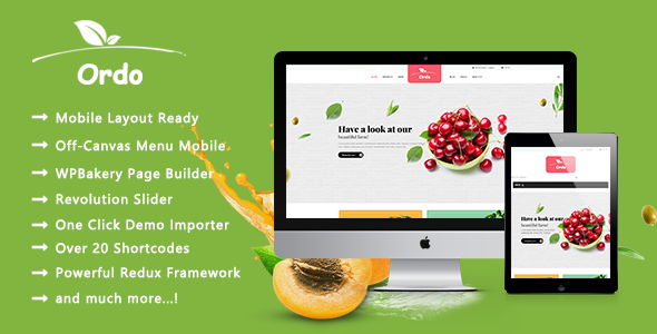 Ordo – Organic Beauty Responsive WooCommerce WordPress Theme