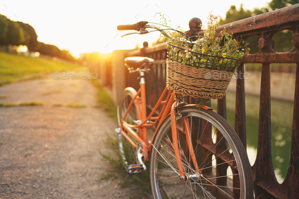 Beautiful bicycle with flowers in a basket stands on the street - Stock Photo - Images