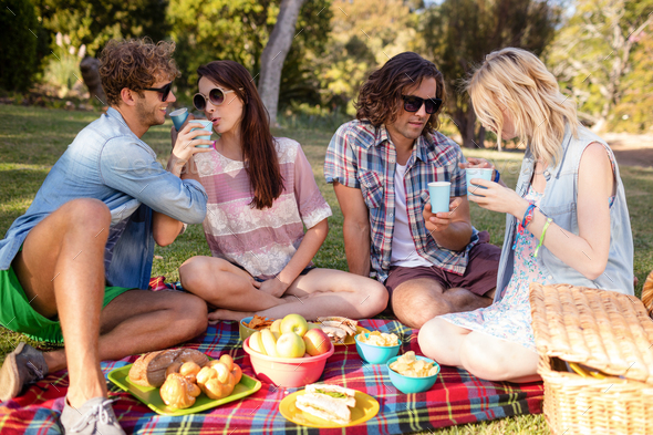 Friends having picnic in park - Stock Photo - Images