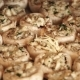 Mushrooms Sprinkle Grated Cheese for Baking on Baking Sheet - VideoHive Item for Sale