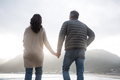 Rear view of couple holding hands on beach - PhotoDune Item for Sale