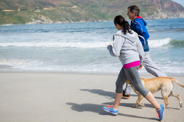 Couple jogging with pet dog - Stock Photo - Images