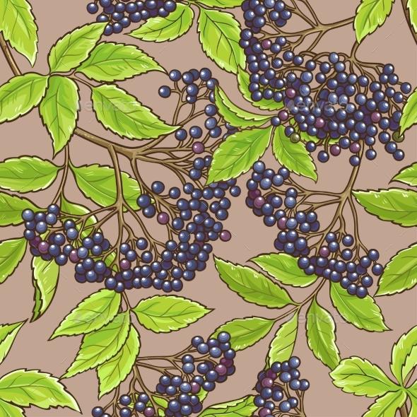 Elderberry Seamless Pattern - Flowers & Plants Nature