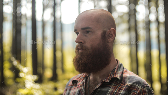 portait of a young bald caucasian man with a beard standing in a forest looking away from a camera - Stock Photo - Images