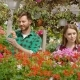 Man and Woman Gardening Flowers - VideoHive Item for Sale