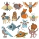 Animals Steampunk Vector Animalistic Characters
