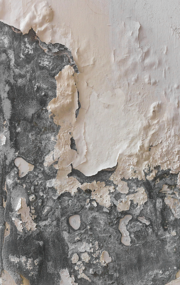 Peeling paint and moldy, indicating damp on the wall - Stock Photo - Images
