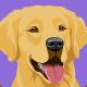 Labrador Retriever - GraphicRiver Item for Sale