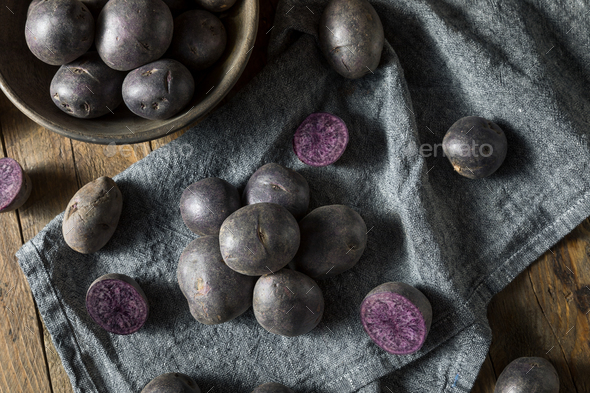 Raw Organic Purple Baby Potatoes - Stock Photo - Images
