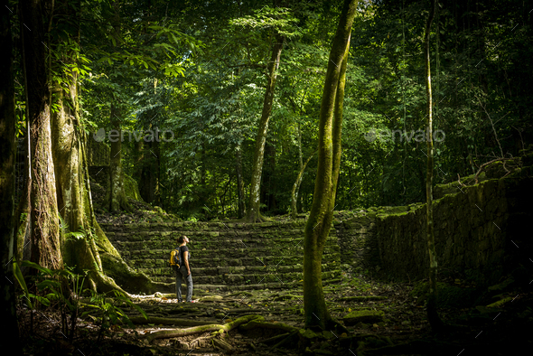 Adventure Travel In Jungle - Stock Photo - Images