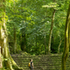 Woman Exploring Jungle Ruins - PhotoDune Item for Sale