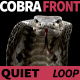 Cobra Front View Quiet - VideoHive Item for Sale