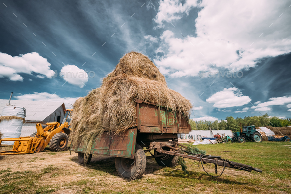Tractor Cart With Dry Grass Straw Bales In Backyard. Special Agr - Stock Photo - Images