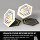 Hexagon Fold Out Style Brochure - GraphicRiver Item for Sale