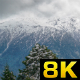 Deep Valley Covered With Pine Forest and Snowy Mountains - VideoHive Item for Sale