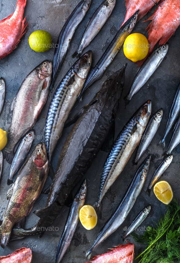 Assortment of fresh fish on dark background, top view - Stock Photo - Images