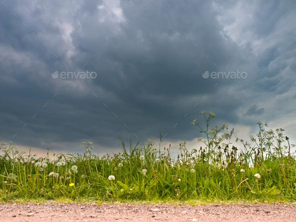 Dark Sky in Spring - Stock Photo - Images