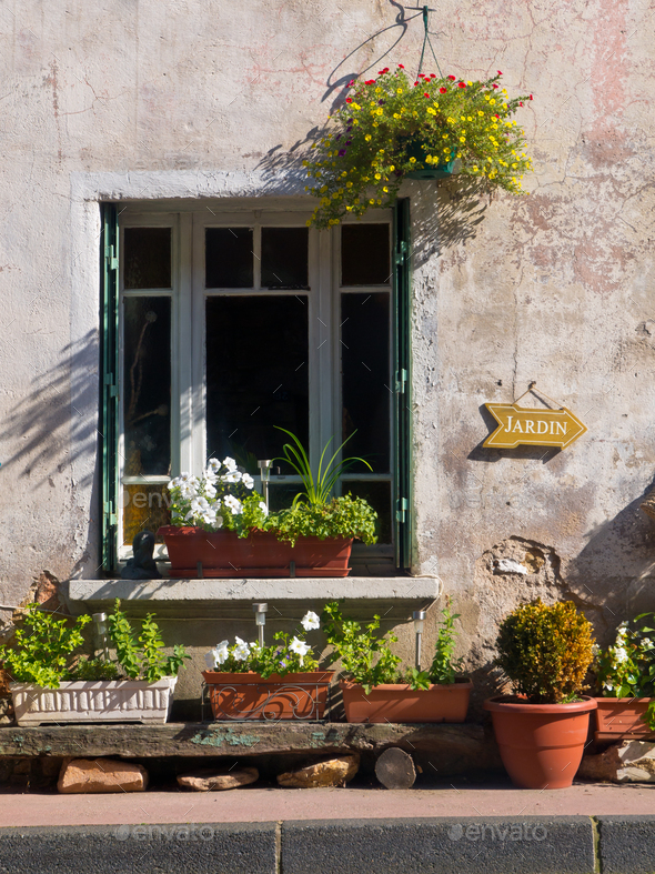 Window Gardening - Stock Photo - Images