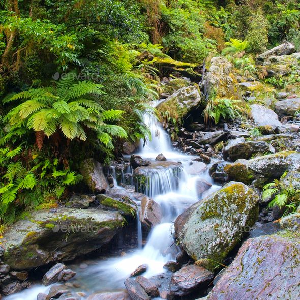 Waterfall in lush rain forest - Stock Photo - Images