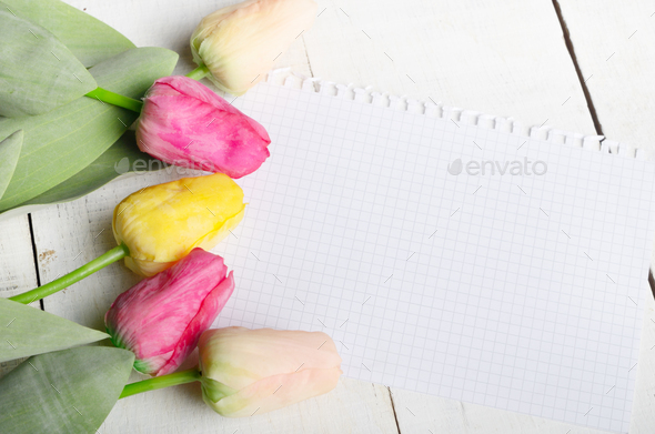 High angle shot of orange rosy and yellow Spring tulip flowers a - Stock Photo - Images