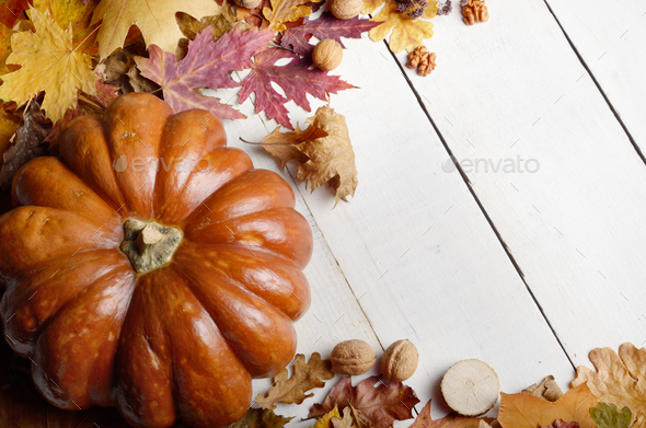 High angle shot of Pumpkin with dry maple and oak leaves nuts on - Stock Photo - Images